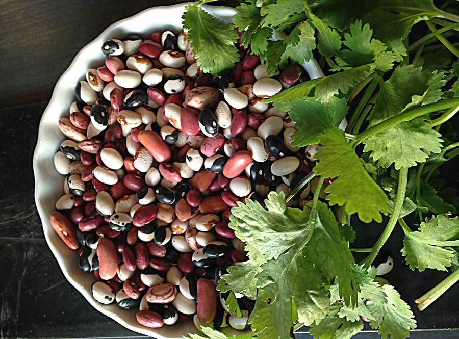 Instant Pot Refried Beans Recipes Assorted Beans in a Bowl with Cilantro