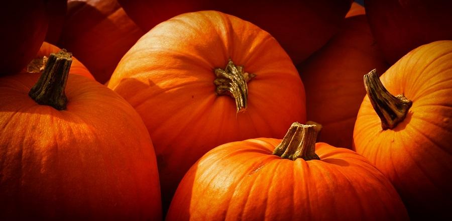 Slow Cooker Fall Dump Cake Recipes Pumpkins
