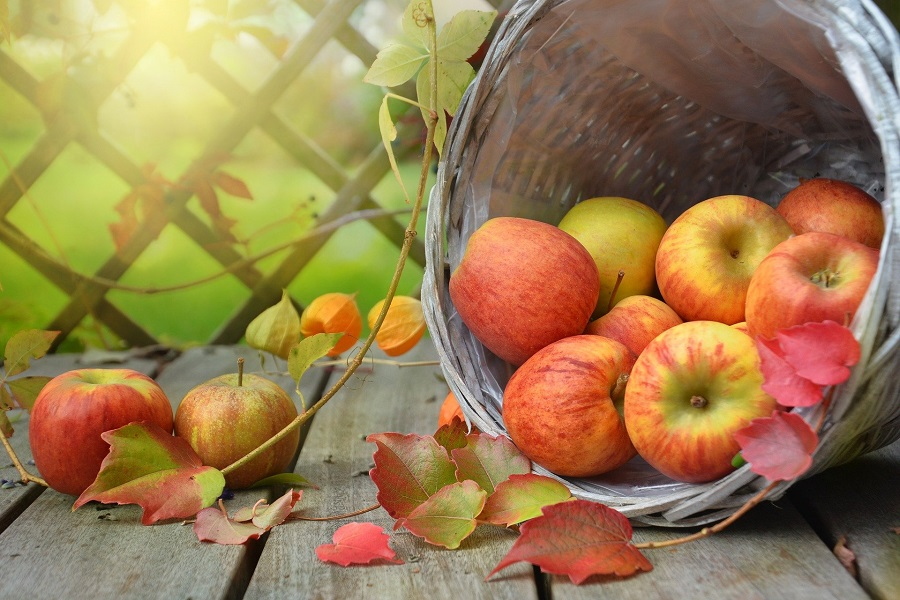 Slow Cooker Fall Dump Cake Recipes Apples Pouring Out of a Barrel