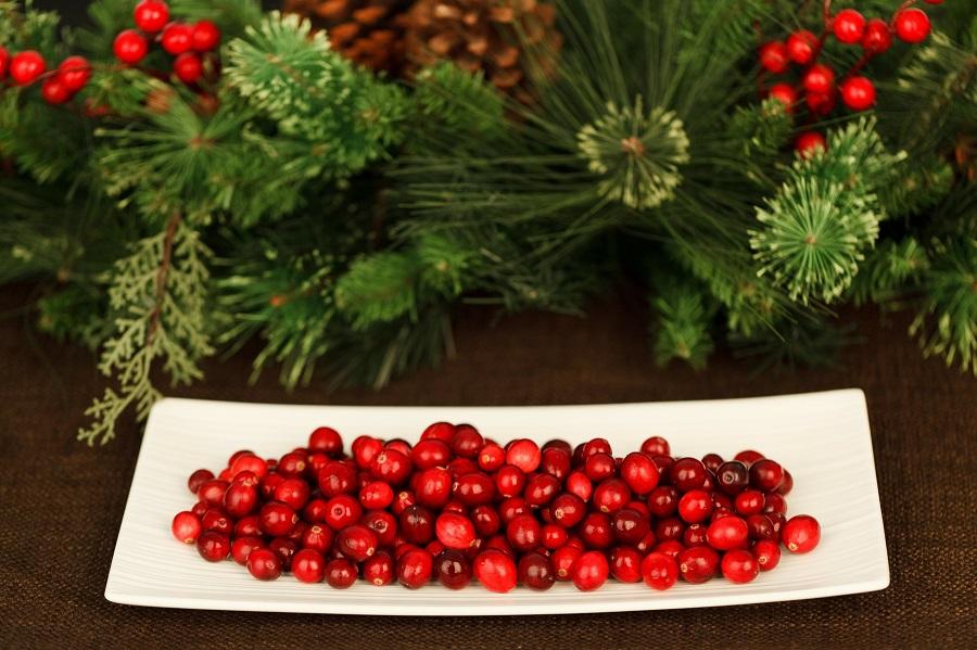 Instant Pot Cranberry Chicken Recipes a Platter of Cranberries
