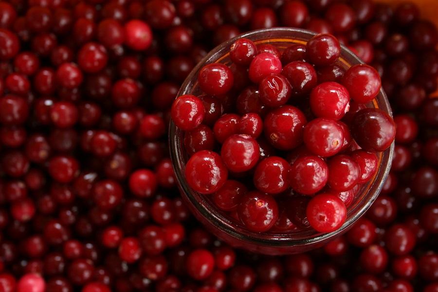 Instant Pot Cranberry Chicken Recipes a Jar of Cranberries