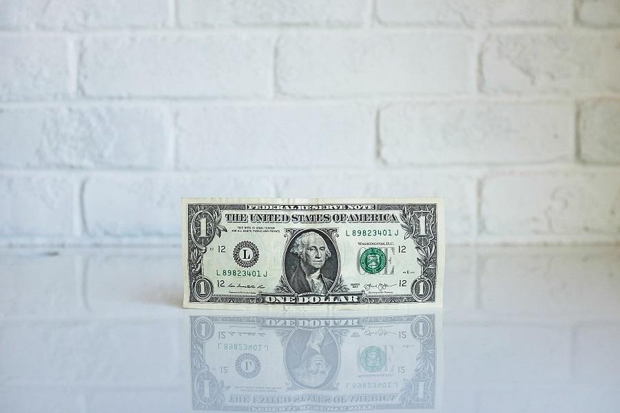 Budget Friendly Beef Stroganoff A Dollar Bill on a Counter Top
