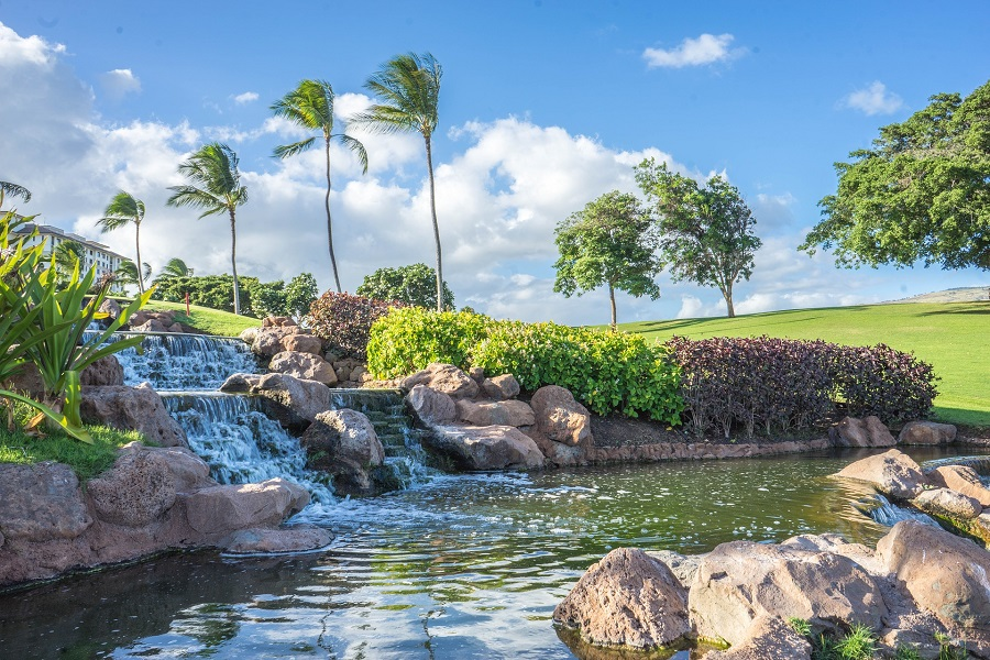 Crockpot Hawaiian BBQ Recipes A Small Waterfall in the Distance with Palm Trees Surrounding It