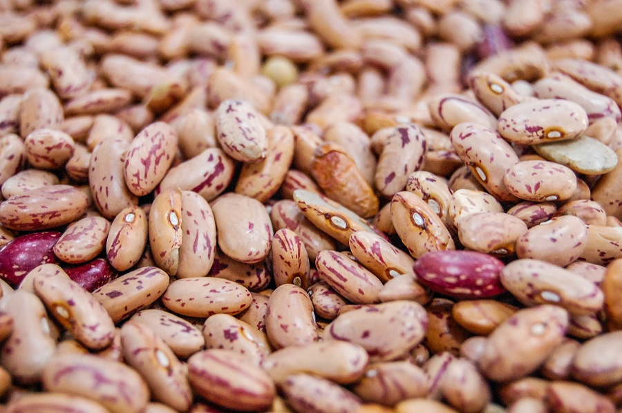 Instant Pot Tips for Cooking Beans Close Up of Dry Pinto Beans