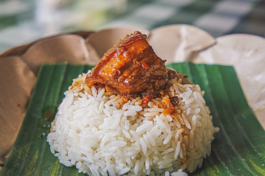 Instant Pot Tips for Cooking Rice Close Up of Rice with Meat On Top