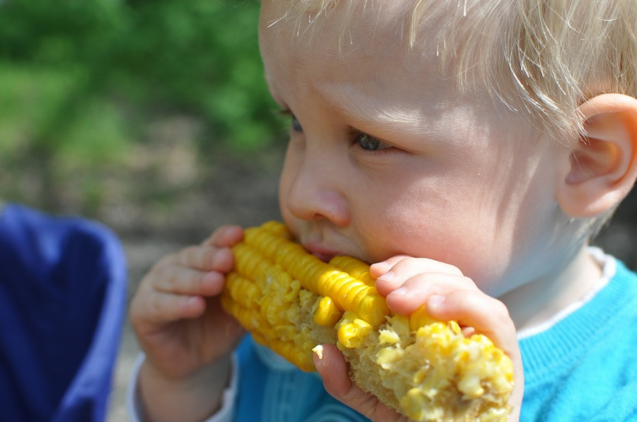Crockpot Corn on the Cob Recipes Close Up of a Child Eating Corn on the Cob